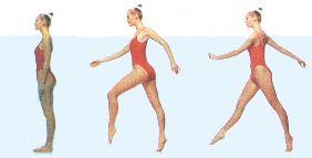 Эффективные упражнения в бассейне для похудения